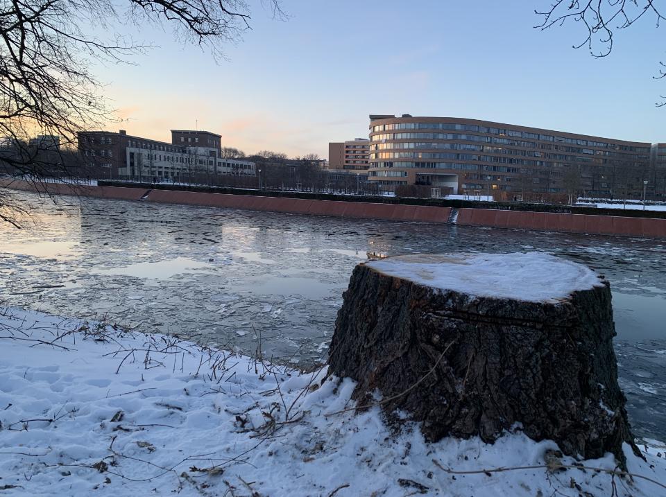 winterspaziergang-berlin-beamtenschlange